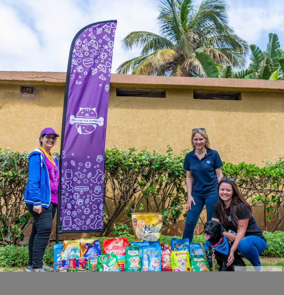 Another Successful Absolute Pets Paws On The Promenade Dog Walk